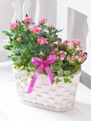 Happy Birthday Pink Rose and Kalanchoe Basket